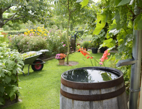 Bewässern mit Regenfass oder oberirdischem Regenwassertank